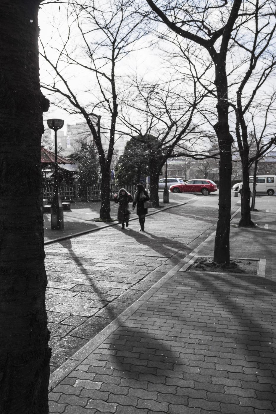 Japan_2015-1020451.jpg