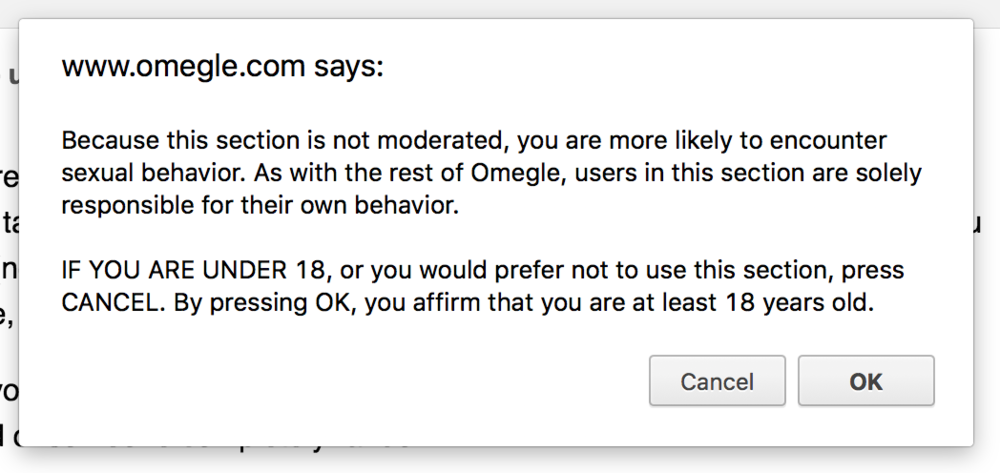 Screen shot of the Warning you get  when you click on the adult 18+ section of Omegle