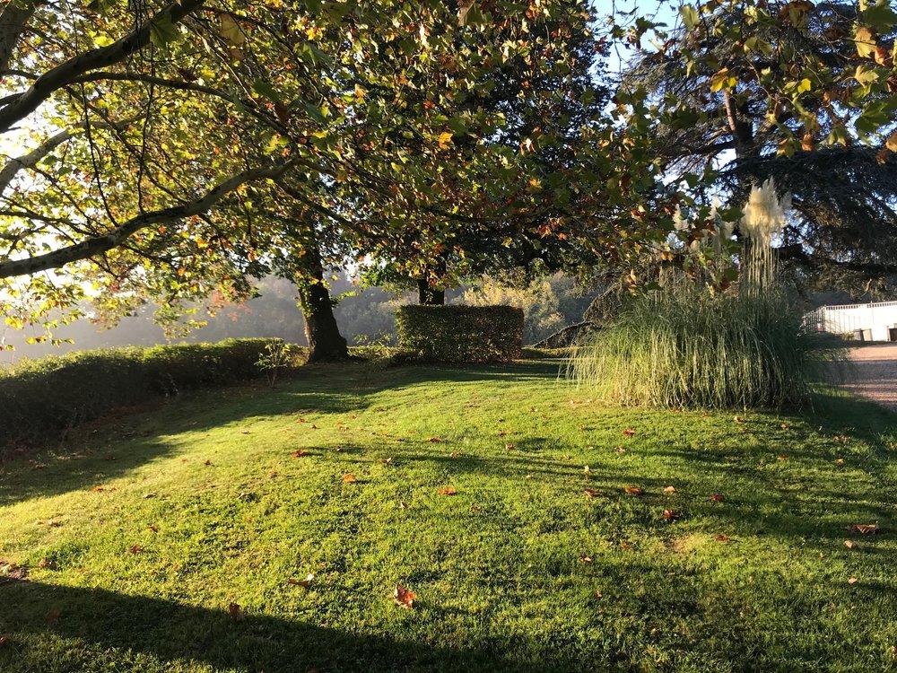 park morning IMG_5812.jpg