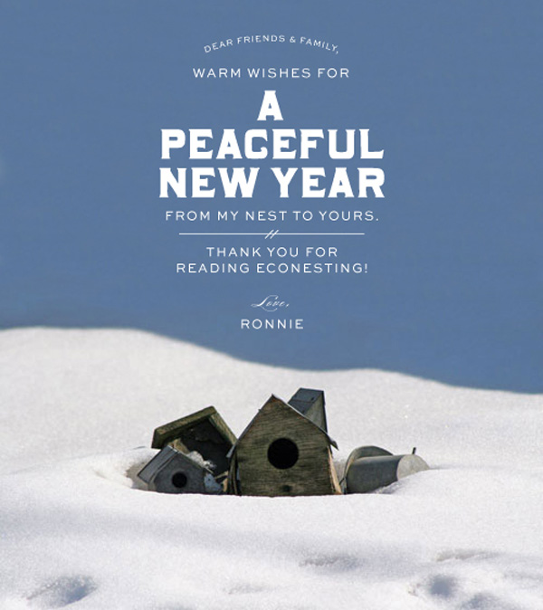 Econesting_New_Years_Card_2012-2