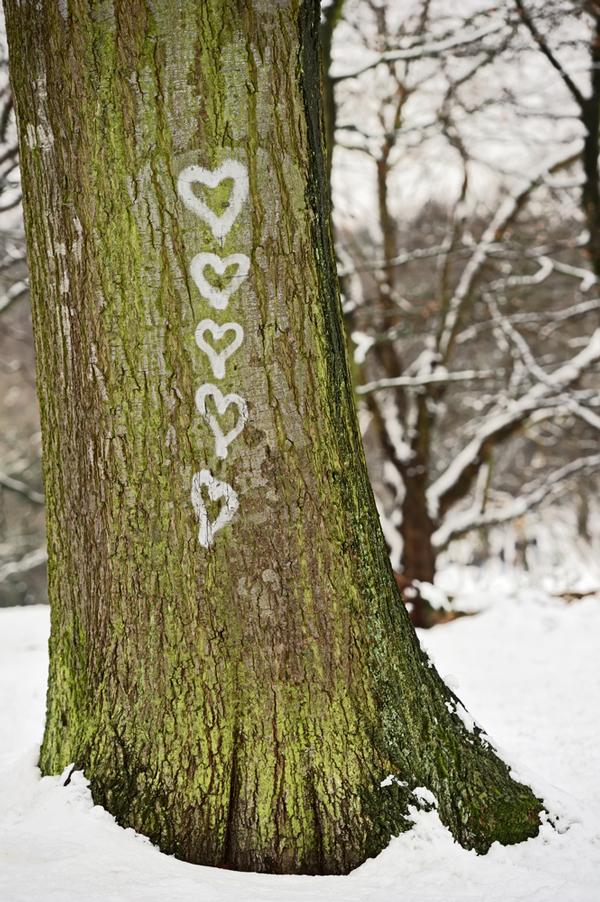 tree_hearts
