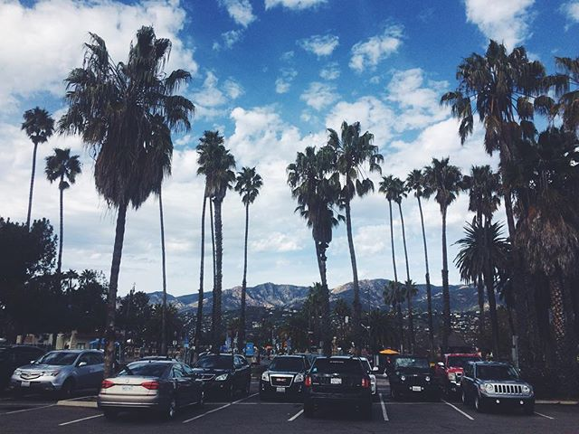 Love me some palm trees 🌴🌴🌴 #santabarbara #California