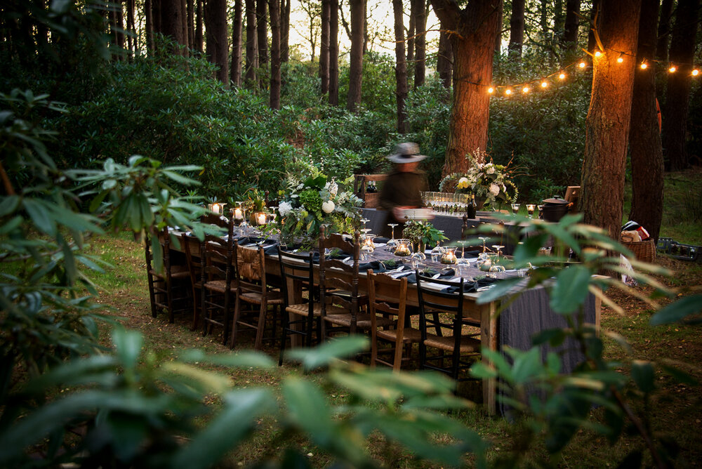 Dining In The Middle Of A Forest