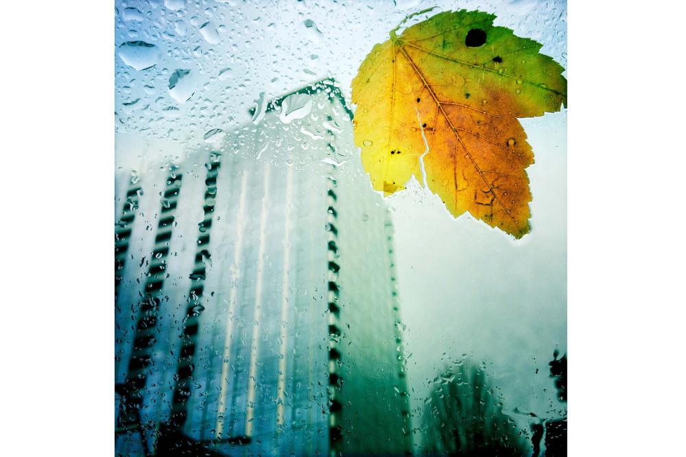 2012-12-18-11-25-56-1.jpg
