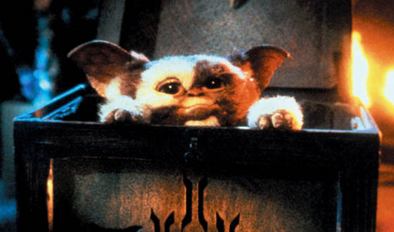 Gremlins-Mogwai-box-Gizmo-photo.jpg
