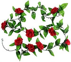 rose vine.jpg