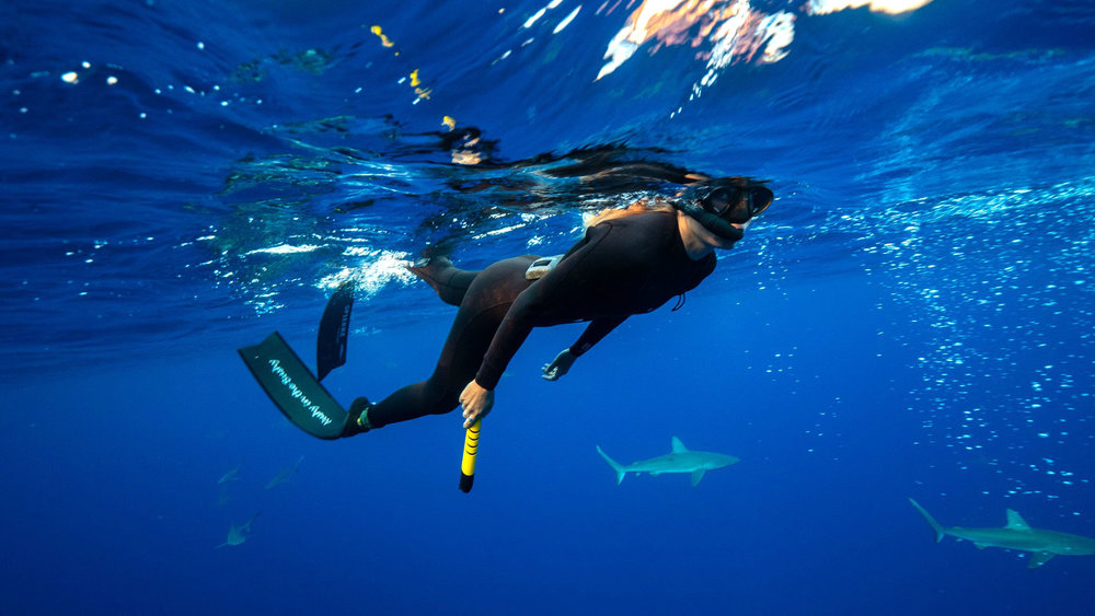 Snorkeling-with-sharks
