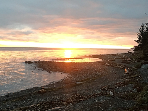 Grace called me out of bed at 7:00 am this morning and took me to the beach where I was greeted by this stunning sunrise and was led into a divine qigong practice. (Kitty Coleman Provincial Park, Vancouver Island)