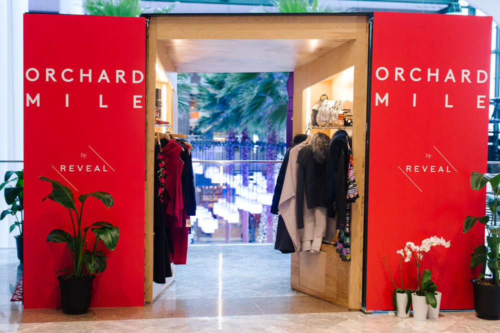 Holiday Gift Box: Orchard Mile by REVEAL