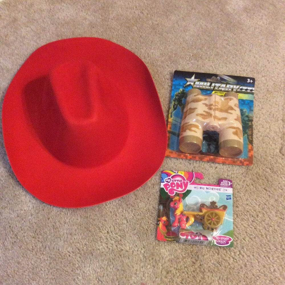 Pony (Walmart $4.88) & Hat + Bin. (Dollar Tree $2)