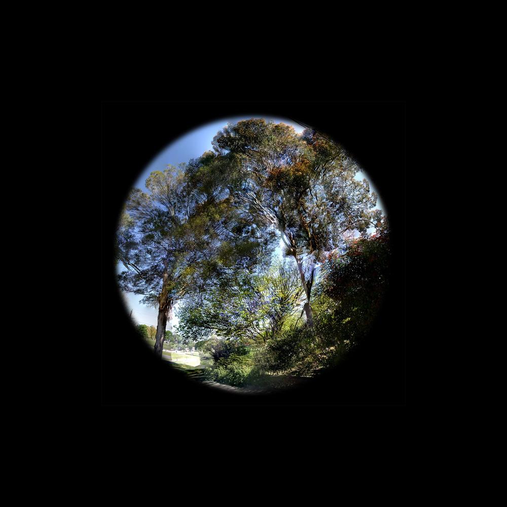 Porthole - Apple Gum - WU34