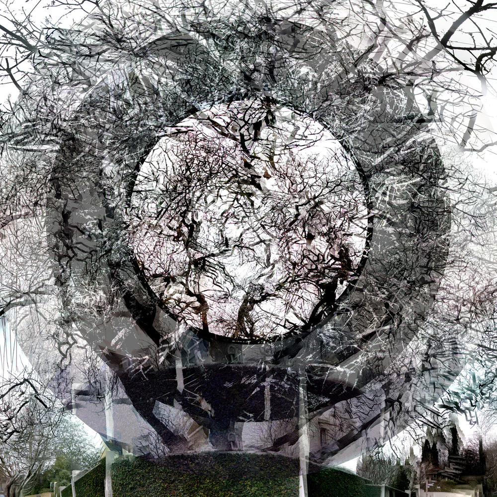 Clendon Grove - WU38