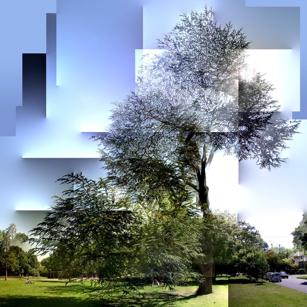 Parque Scene - WU32