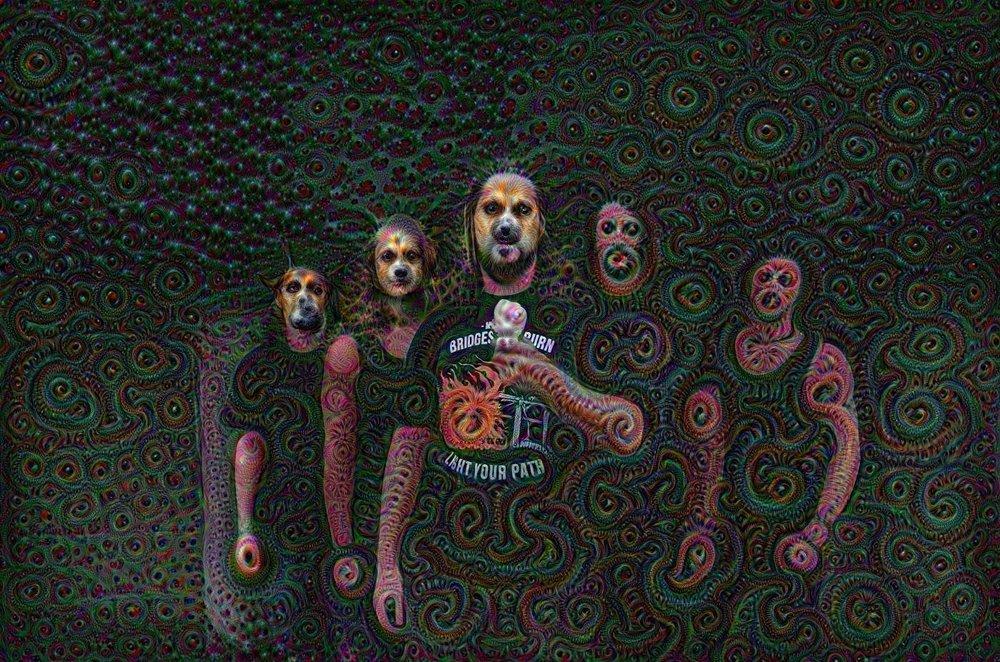 Soft, furry metal band