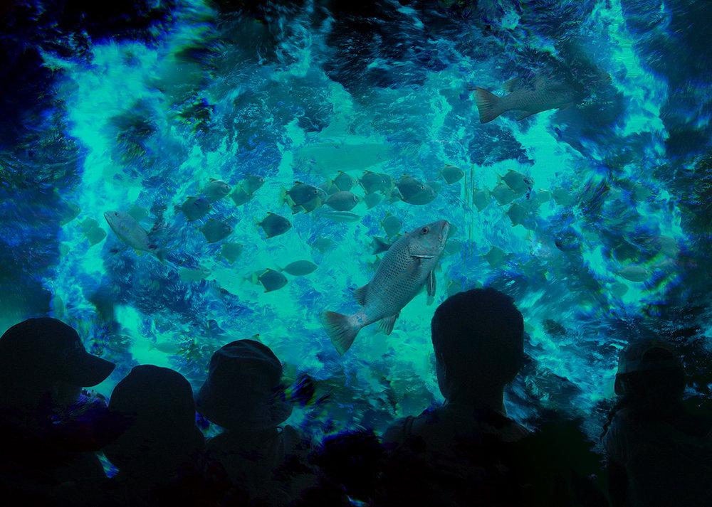 AquariumSm.jpg