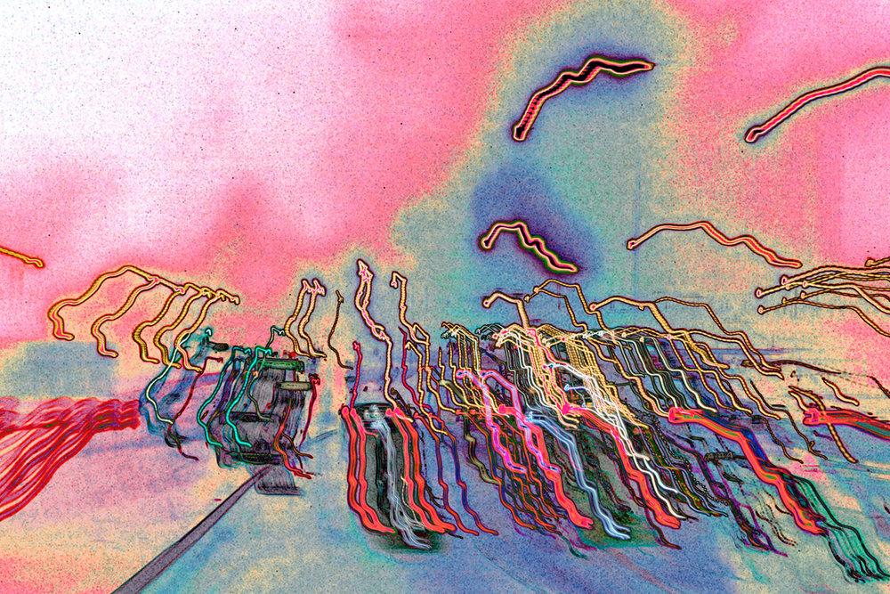 Spermatoza festival
