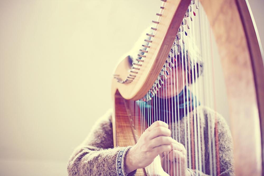 Michael-Harp-4.jpg