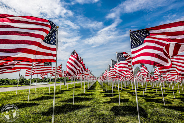 Patriotic - Field Of Heroes - Payne Productions (4).JPG