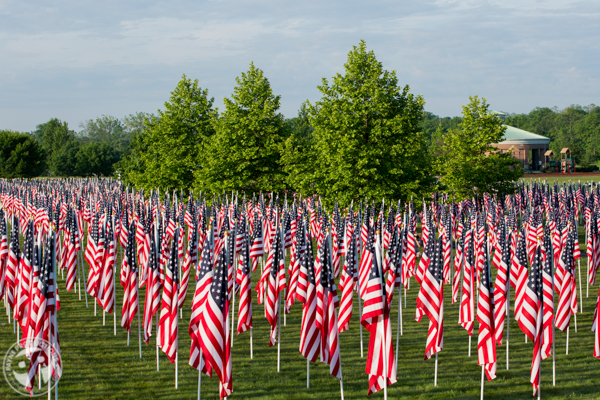 Patriotic - Field Of Heroes - Payne Productions (19).JPG