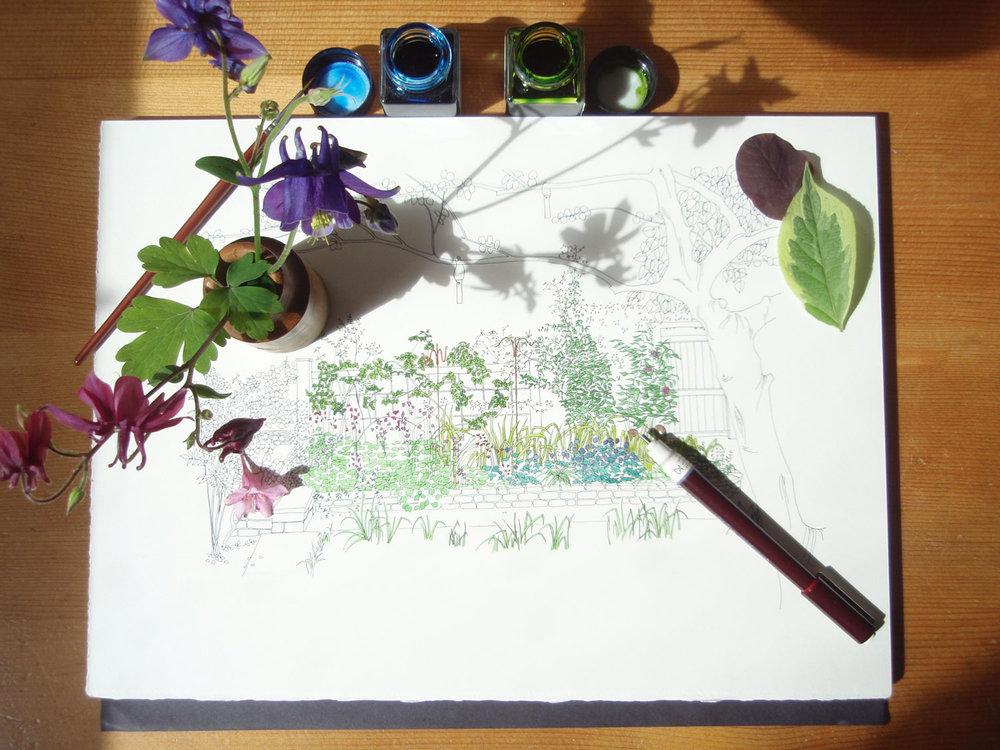 gallery_garden_ink.jpg