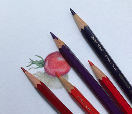 Colour pencils for a tiny tomato