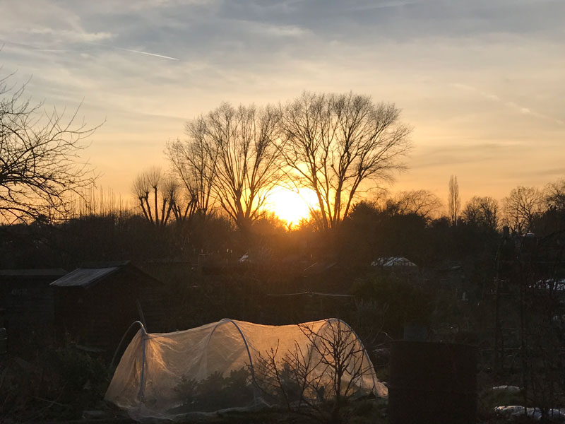 A heart shaped sunset in February