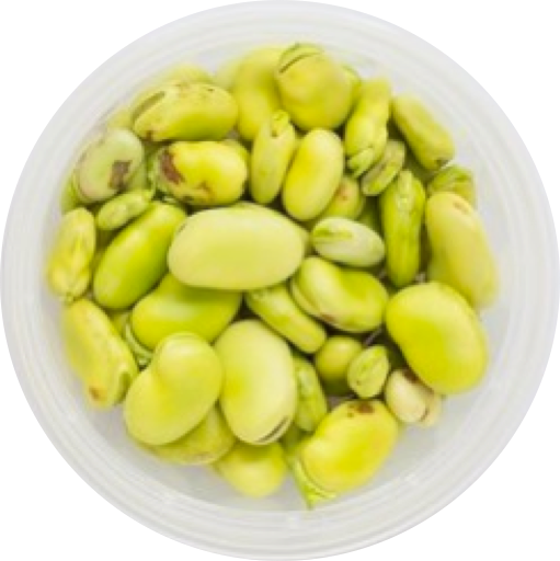 fava2.png