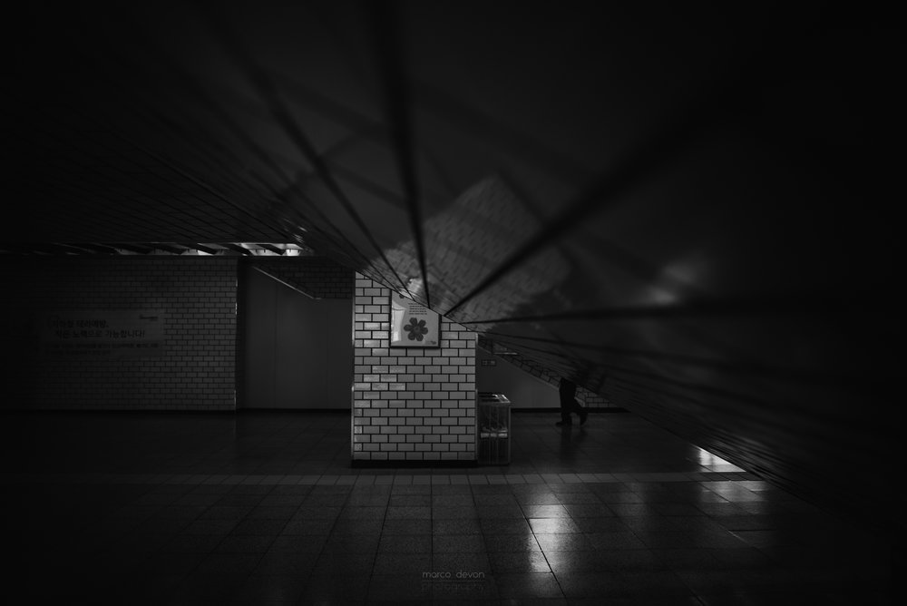 Seoul Photographer 3