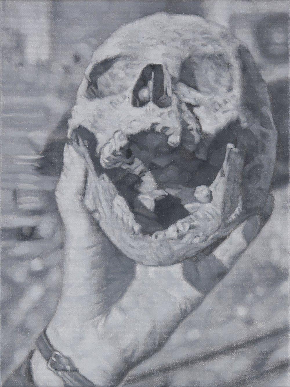 Tomas Lundgren   Skull (4)  2016 Oil on canvas 21 x 28 cm