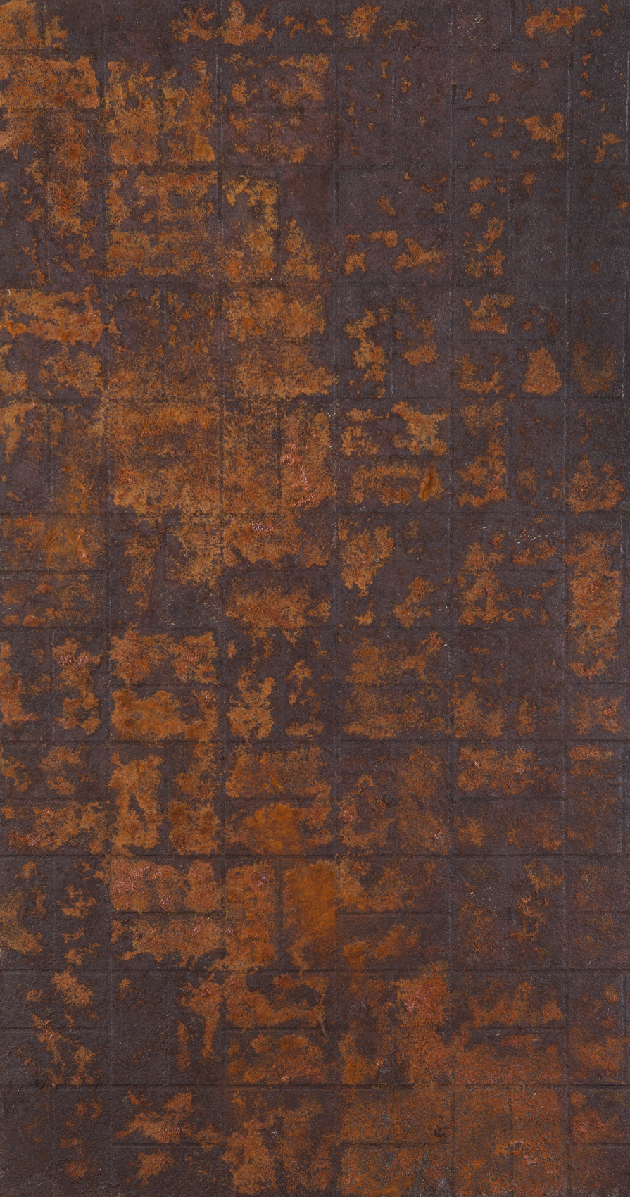 Gal Weinstein   Untitled  2016 Steel wool and rust on plywood 150 x 80 cm