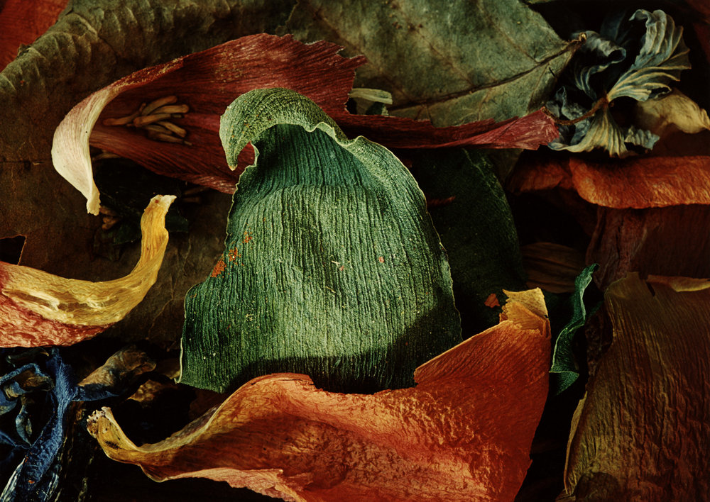 gröna bladet 30 cm.jpg