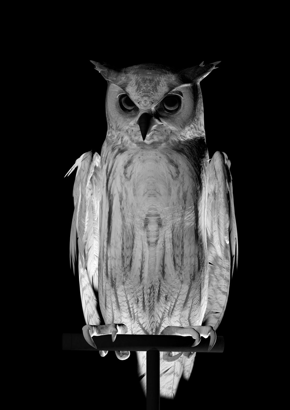 Ann Lislegaard   Oracles, Owls…Some Animals Never Sleep Black & White  2012-2018 3D-Animation with sound, 10:35 minutes Unique