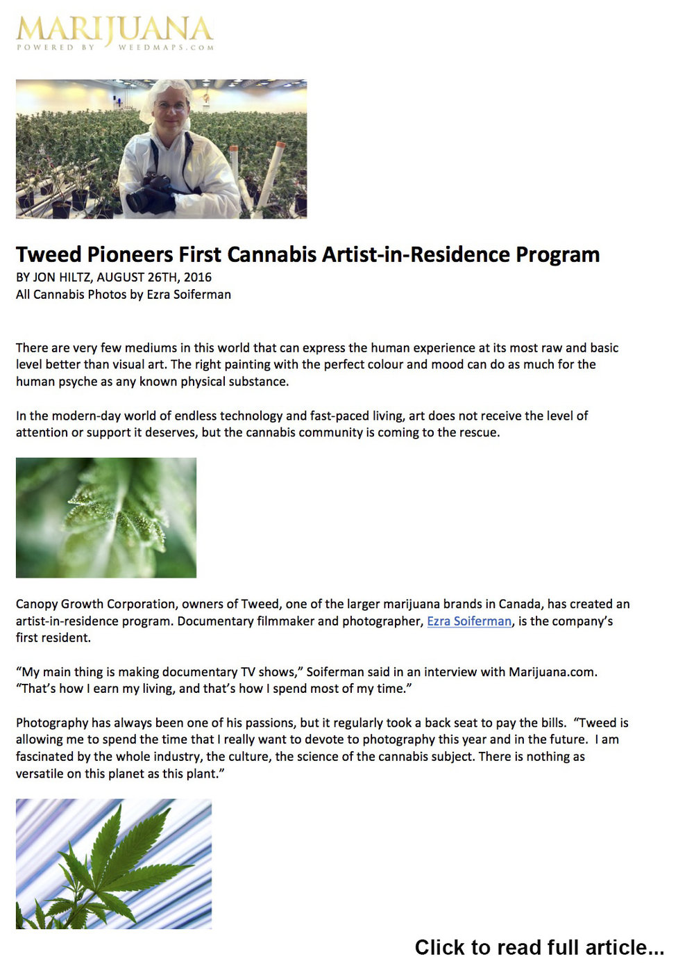 Tweed Artist-in-Residence - Marijuana.com feature story, 2016.