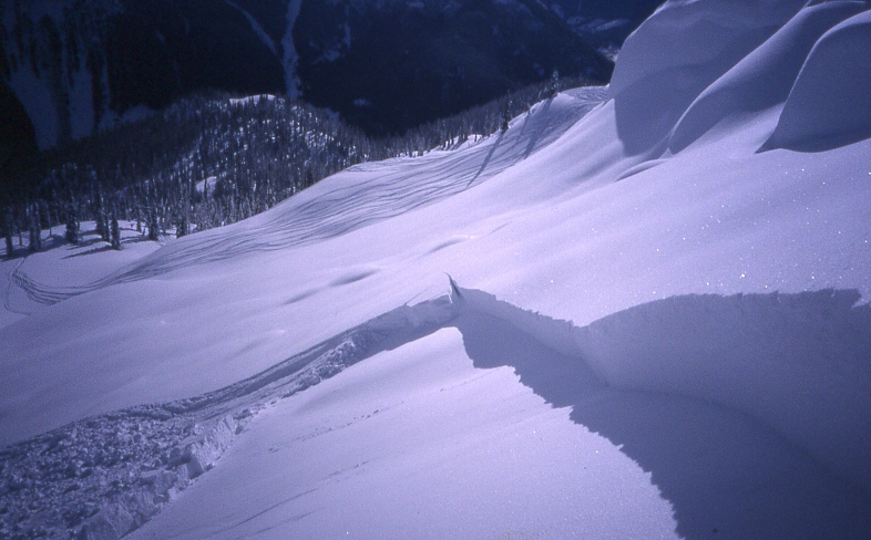 A skier triggered slab avalanche