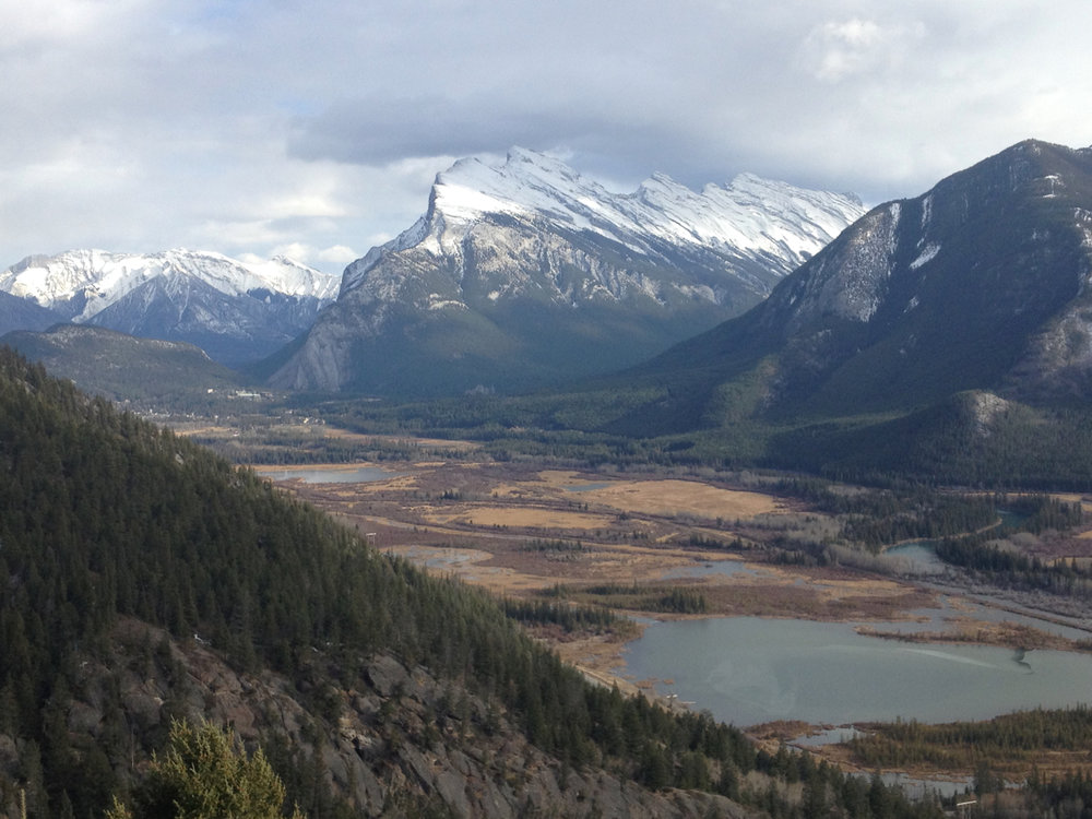 The view from Mt Norquay