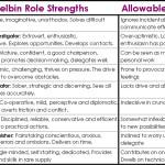 Belbin's Team Roles - Completer