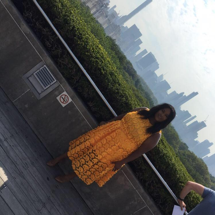 The rooftop garden at the Met Museum. NYC