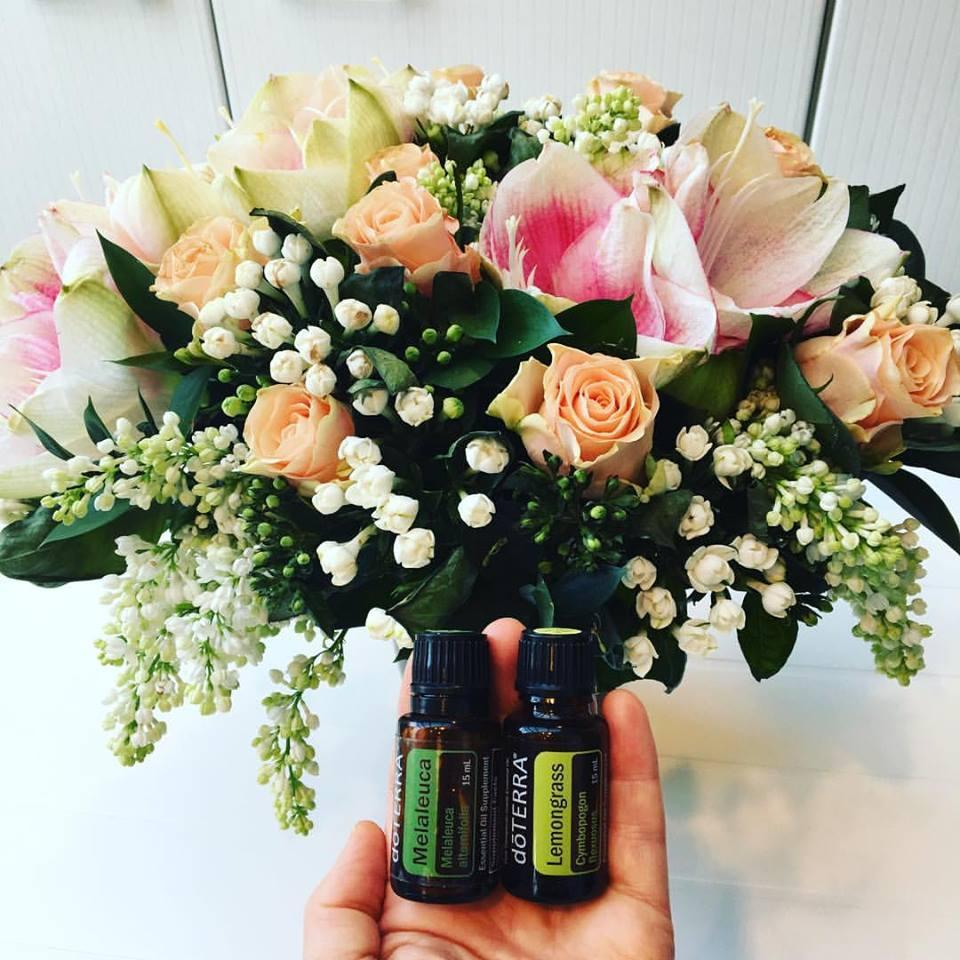 feshflowers_melaleuca_lemongrass
