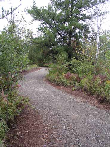 Howard Nature Trail.jpg