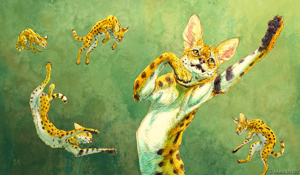 Soaring Serval   ink, photoshop 2014  2nd Place-2017 San Diego County Fair Photography Exhibition