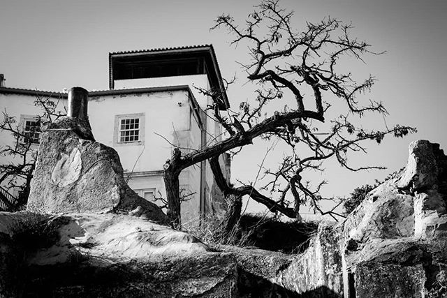 It's cold here.  #lisbon #bw #photooftheday #nikond610  #50mm