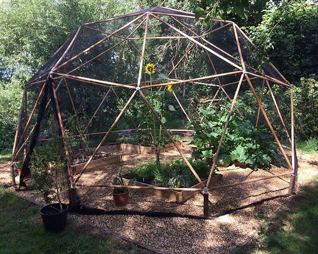 Hubs Lifestyle 4 | Geodesic Domes | Tiny Life Supply.jpg