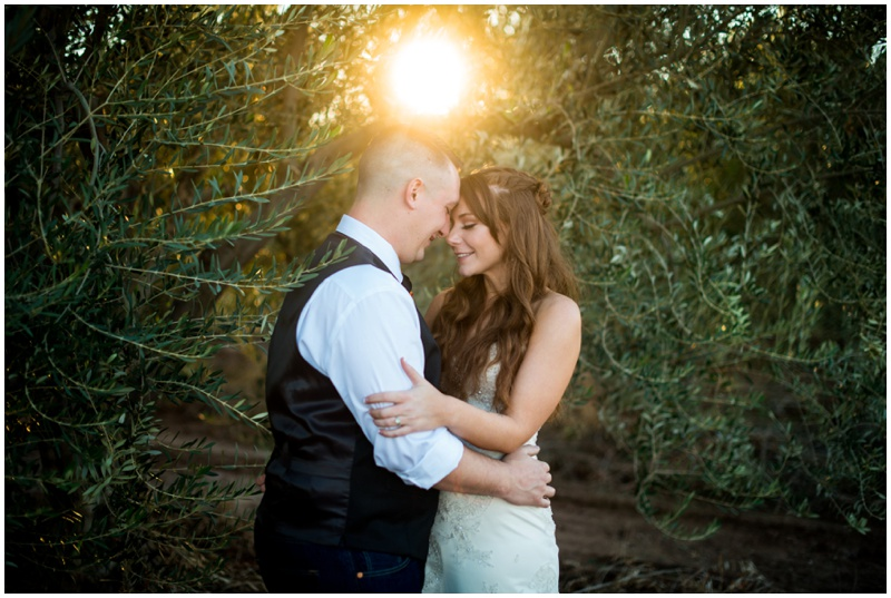 Bride and groom sunset photos for their country rustic wedding at the Queen Creek Olive Mill in Arizona.