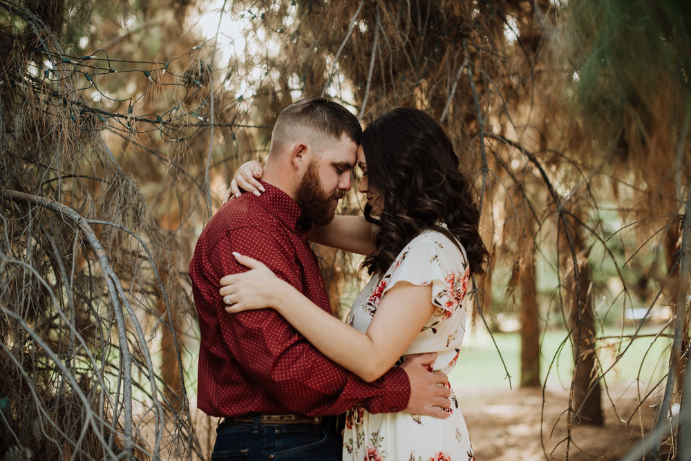 Schnepf Farm Woodsy Engagement Images