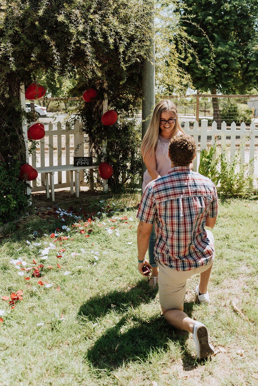 Surprise Proposal Inspiration