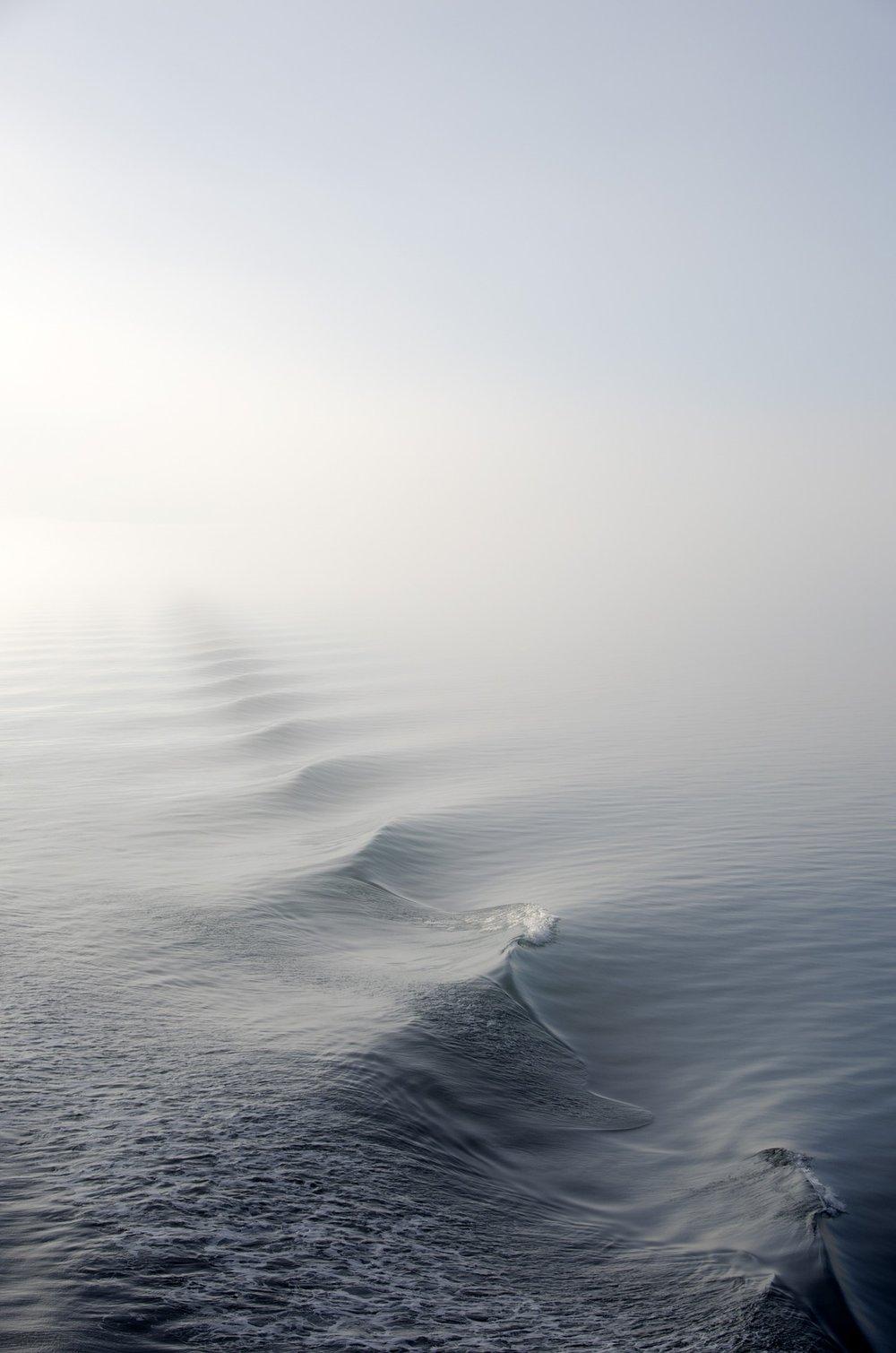 fog-1868416_1920.jpg