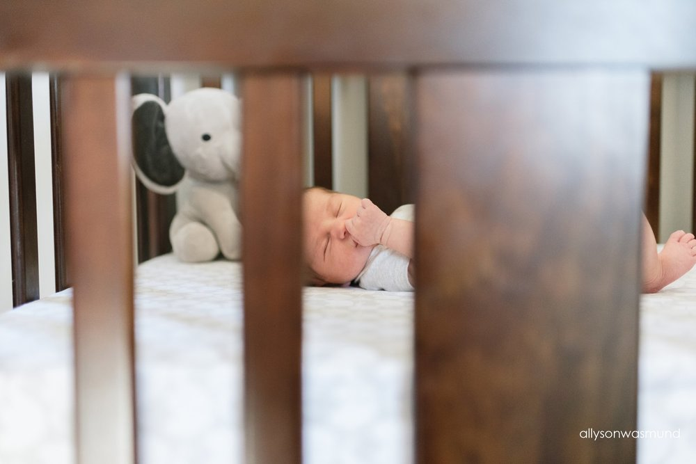inver-grove-heights-mn-lifestyle-newborn-photographer_0087.jpg