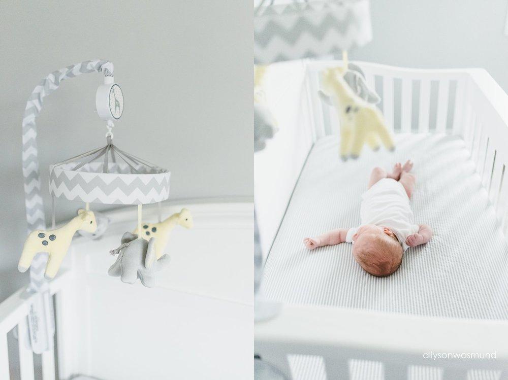 twin-cities-lifestyle-newborn-photographer_0167.jpg