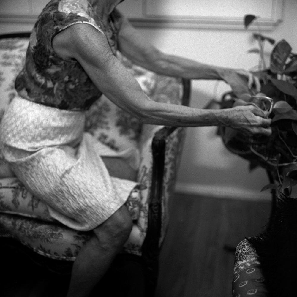 Grandmere-4.jpg