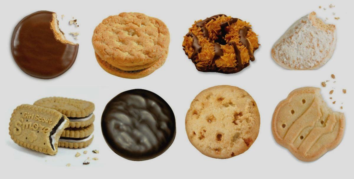 Space Cookies Teams — Space Cookies   FRC Team 1868